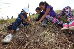 Panameños se unen en Gran Día Nacional de Reforestación