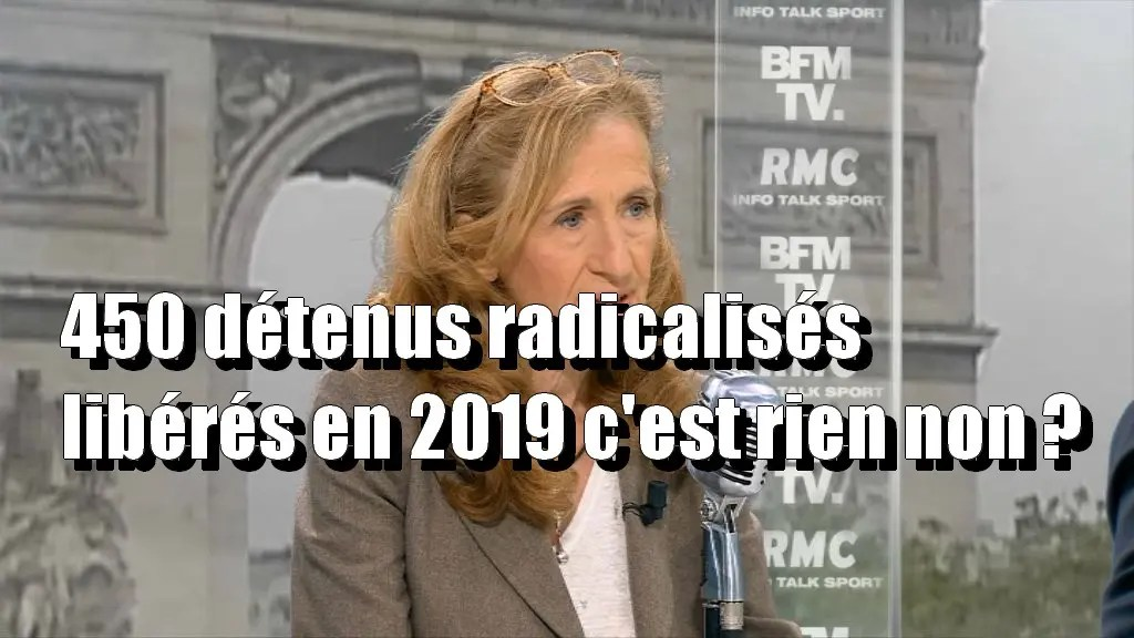 """Résultat de recherche d'images pour """"déclaration de Nicole BELLOUBET djihadistes radicalisés"""""""