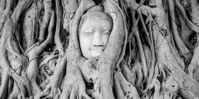 Buda de Ayutthaya