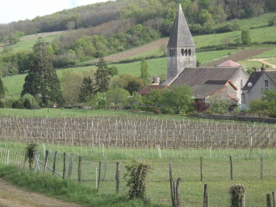 chambre d'hôtes La Gémuloise village vignes