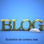 le blog une rédaction de contenu web