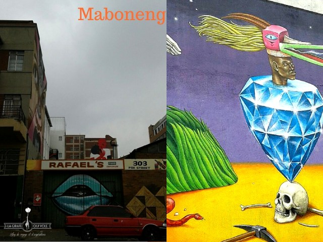 Johannesburg voyage afrique du sud