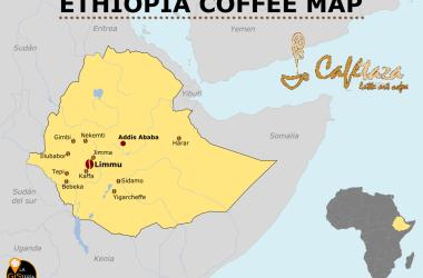 gisteria_cafe_etiopia