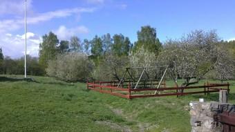 Förskolegården