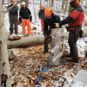 Lagom Landing Students at Chainsaw Training