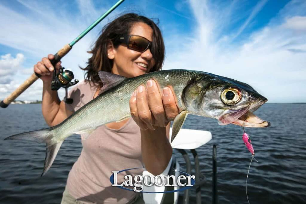 ladyfish are on the sebastian inlet fishing report