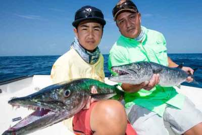 A Pair of father son barracudas