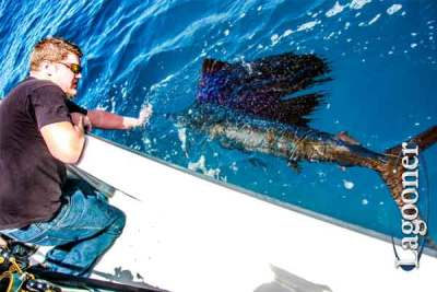Cape Canaveral Deep Sea Fishing Charters