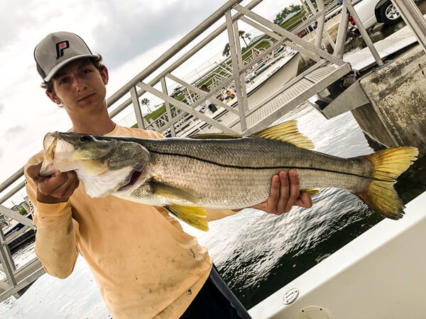Nice Port Canaveral Snook