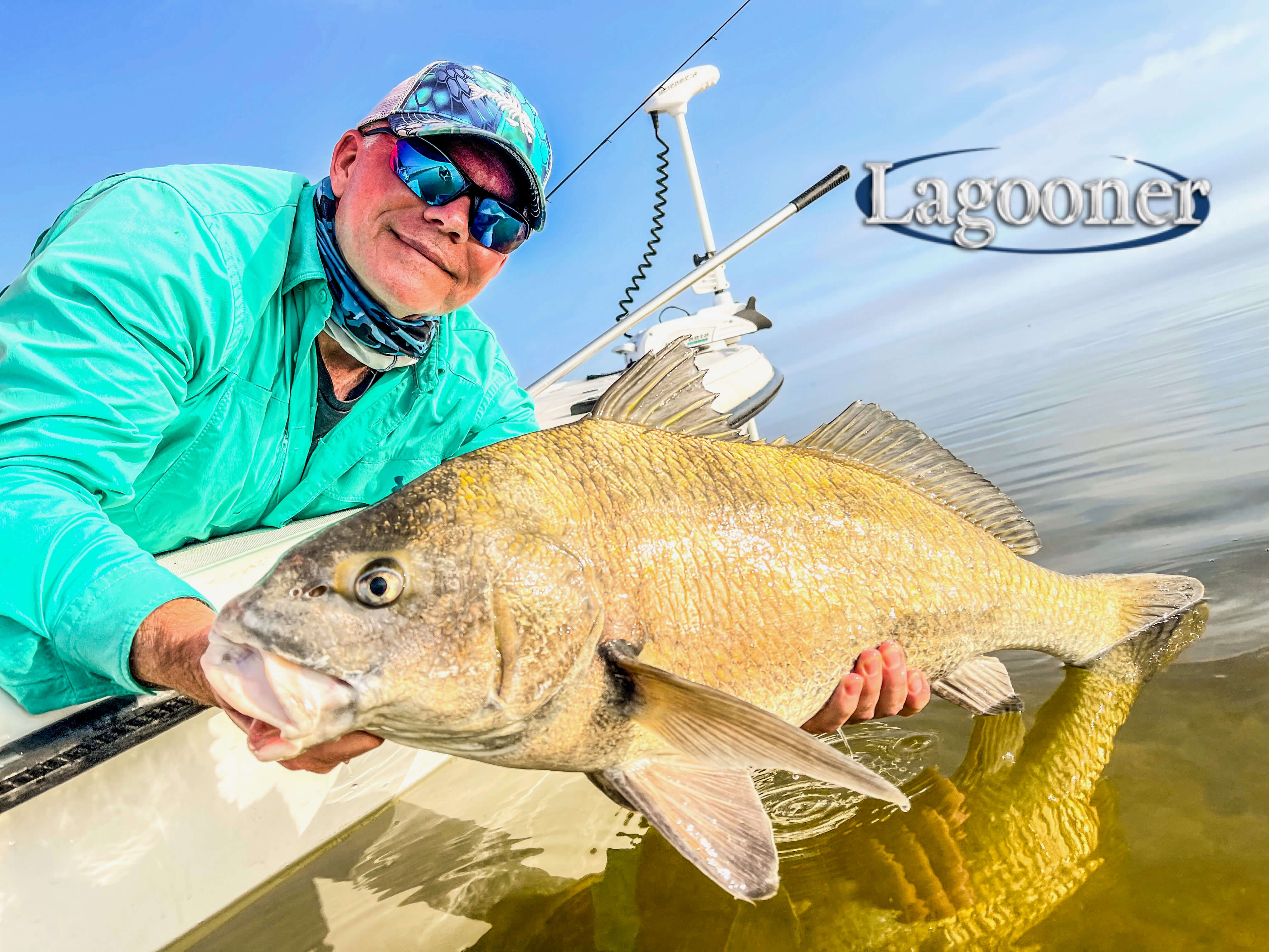 releasing black drum on the indian river lagoon