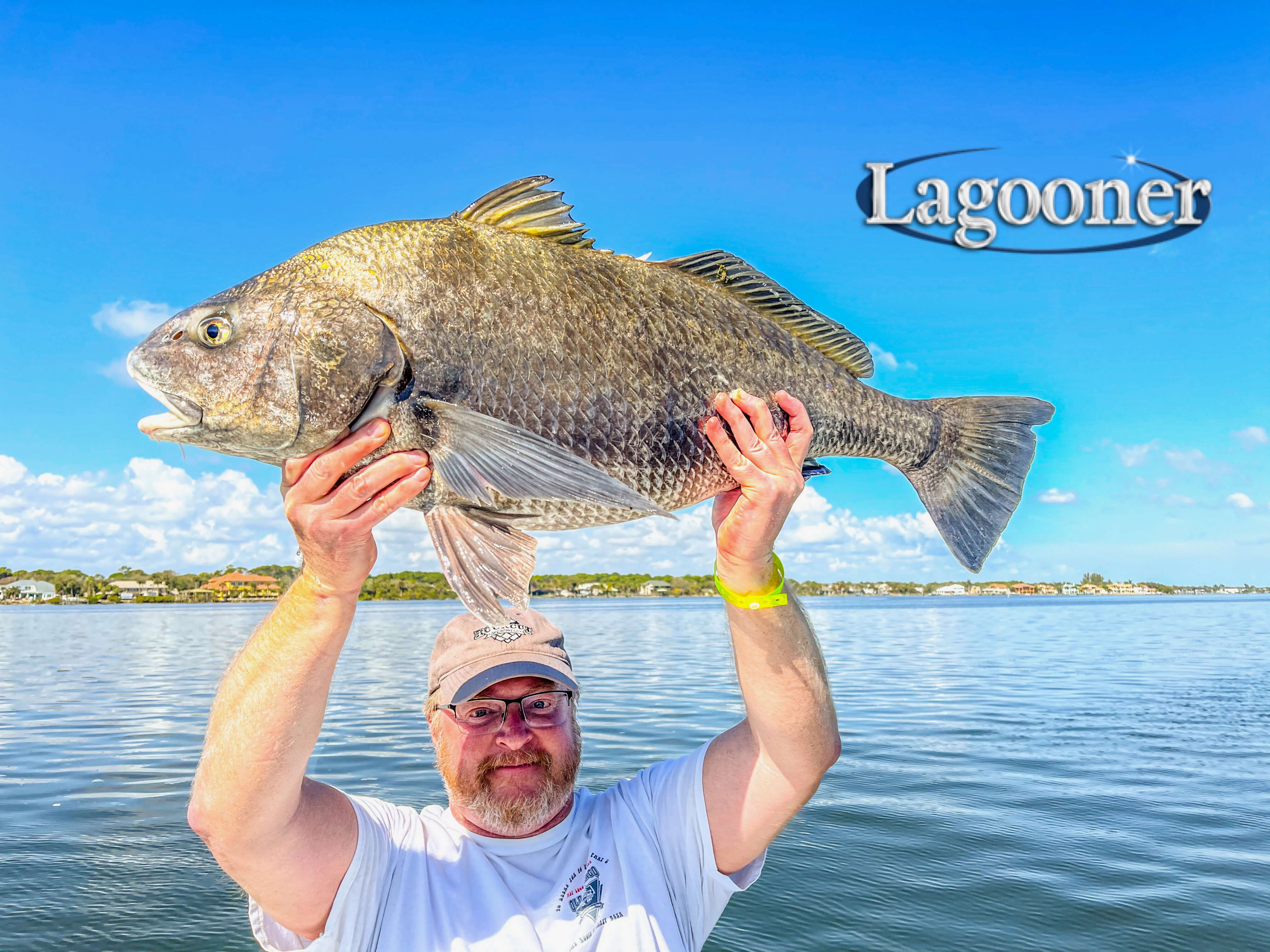 Black Drum on the Indian River Lagoon