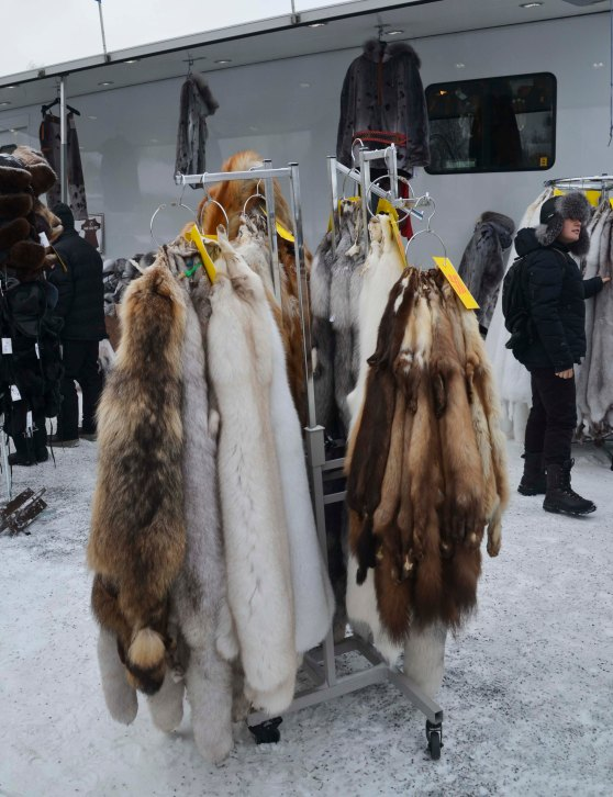 Fox skins and other skins are traditionally sold here. The Sámi people has always been hunters
