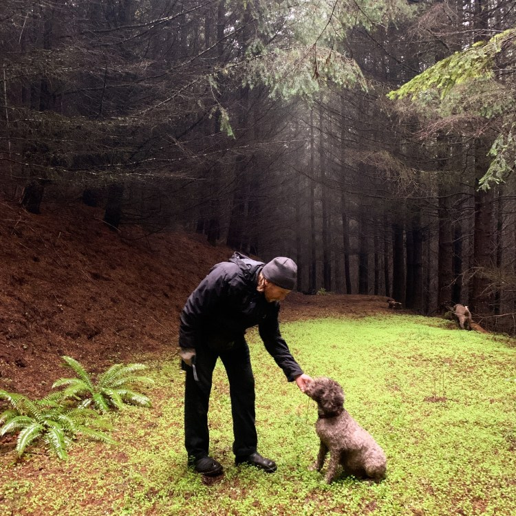 Kevin and his truffle hunting dog Lea in the Pacific Northwest woods preparing to hunt Oregon truffles