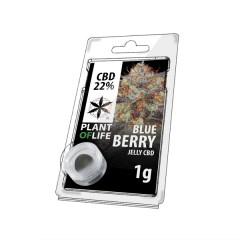blueberry jelly 22% 1g