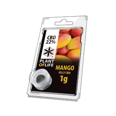Mango Fruit jelly 22% cbd 1g