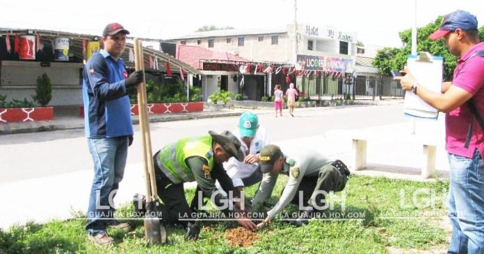 Jornada de arborización en el municipio de San Juan del Cesar.