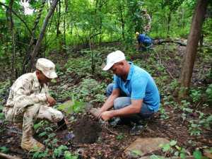La siembra de 200 árboles se realizó a orillas del arroyo Boca de la Rosa.