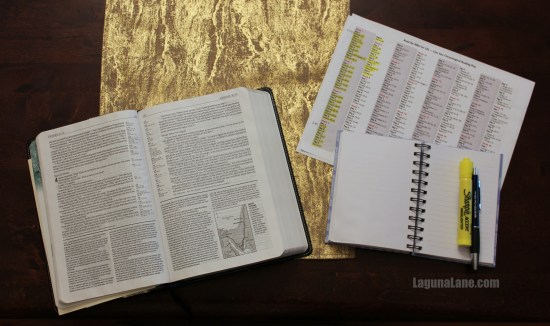 Daily Quiet Time & the Bible Cover to Cover | Laguna Lane