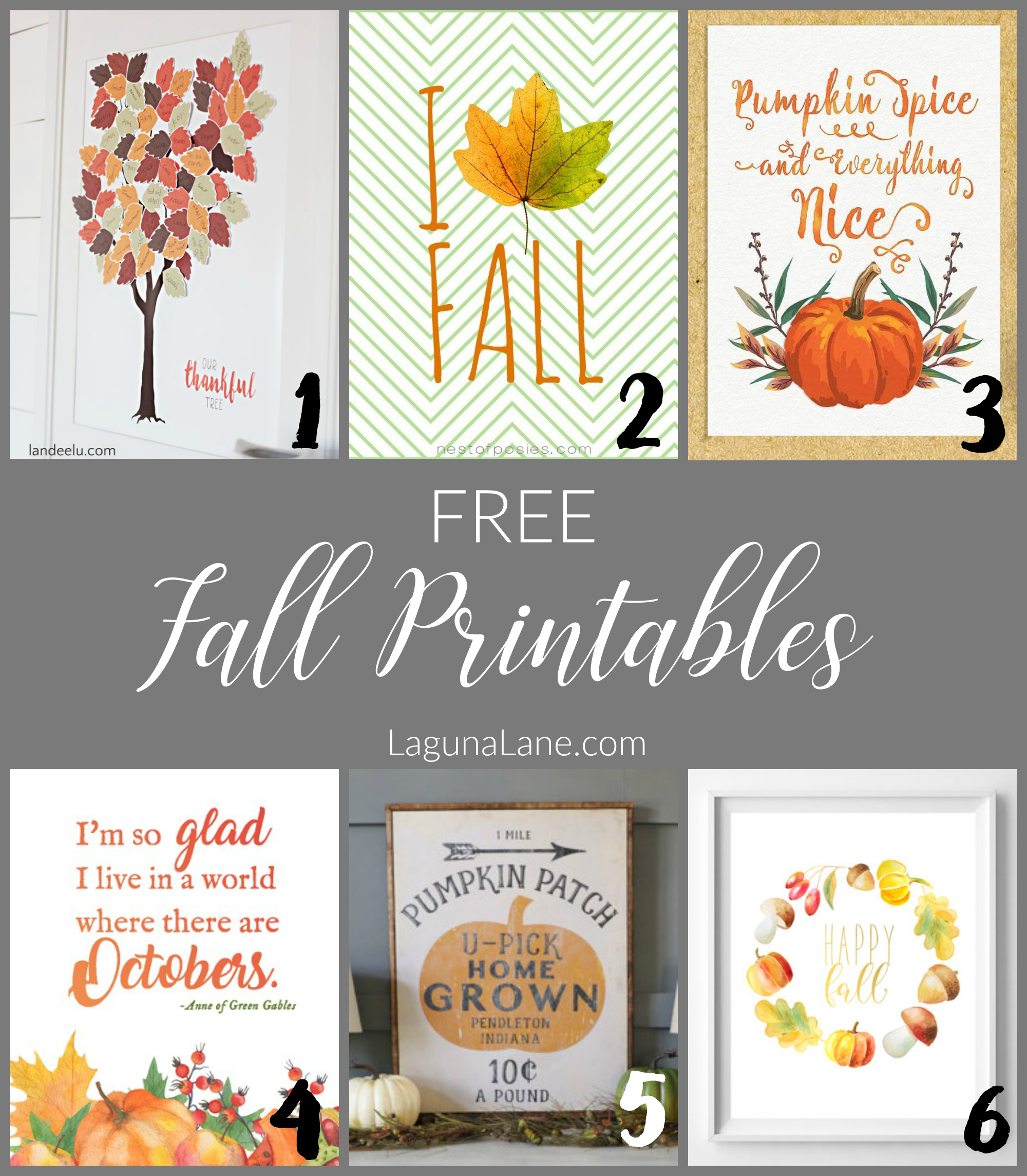 photograph relating to Free Fall Printable called Absolutely free Tumble Printables - An Basic Direction toward Adorn! - Laguna Lane