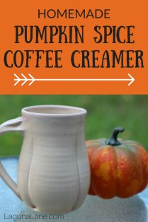 Homemade Pumpkin Coffee Creamer - Only 6 Ingredients! | Laguna Lane