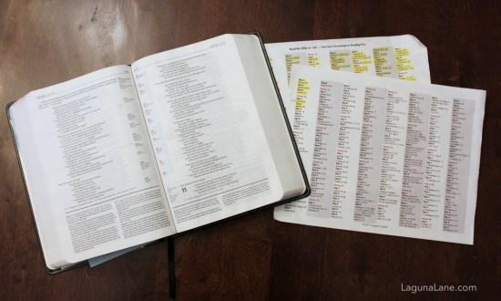 Reading the Bible - Chronological Order | Laguna Lane