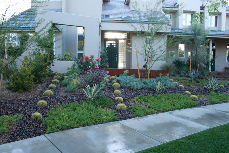 Landscaping Services - Las Vegas Pool Construction Company ... on Xeriscape Backyard Designs  id=18378