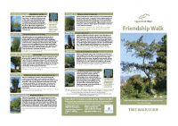 Friendship Tree Walk Guide 8.5×11″