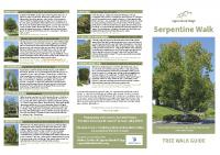 Serpentine Tree Walk Guide 11×17″