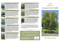 Serpentine Tree Walk Guide 11×17″