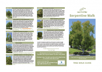 Serpentine Tree Walk Guide 8.5×11″