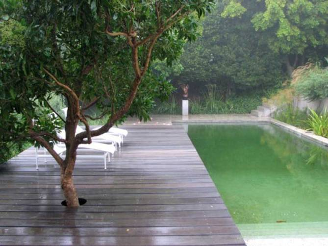 El color de las piscinas la habitaci n verde Piscina natural jardin