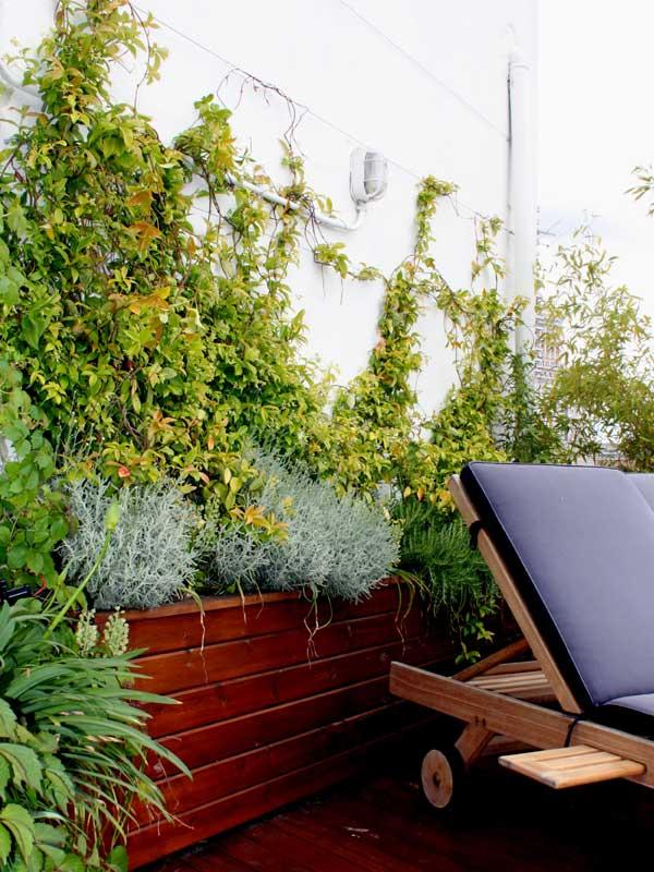 Diseo de terrazas aticos diseo de un jardin en atico en for Piscina cubierta catarroja