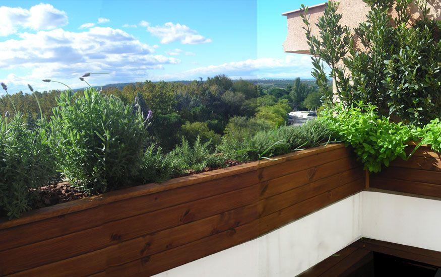 Jardin comestible en un atico la habitaci n verde - Jardines en aticos ...