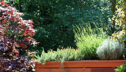 Dise o de jard n en un tico para 2 terrazas la for Plantas verdes exterior