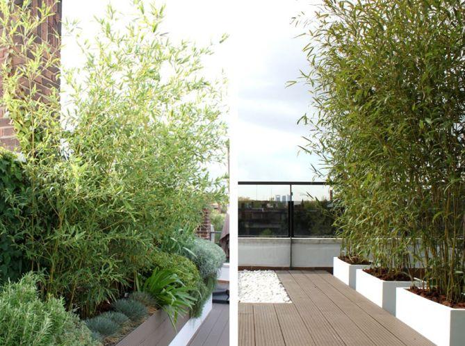 diseño de jardín en terraza en madrid