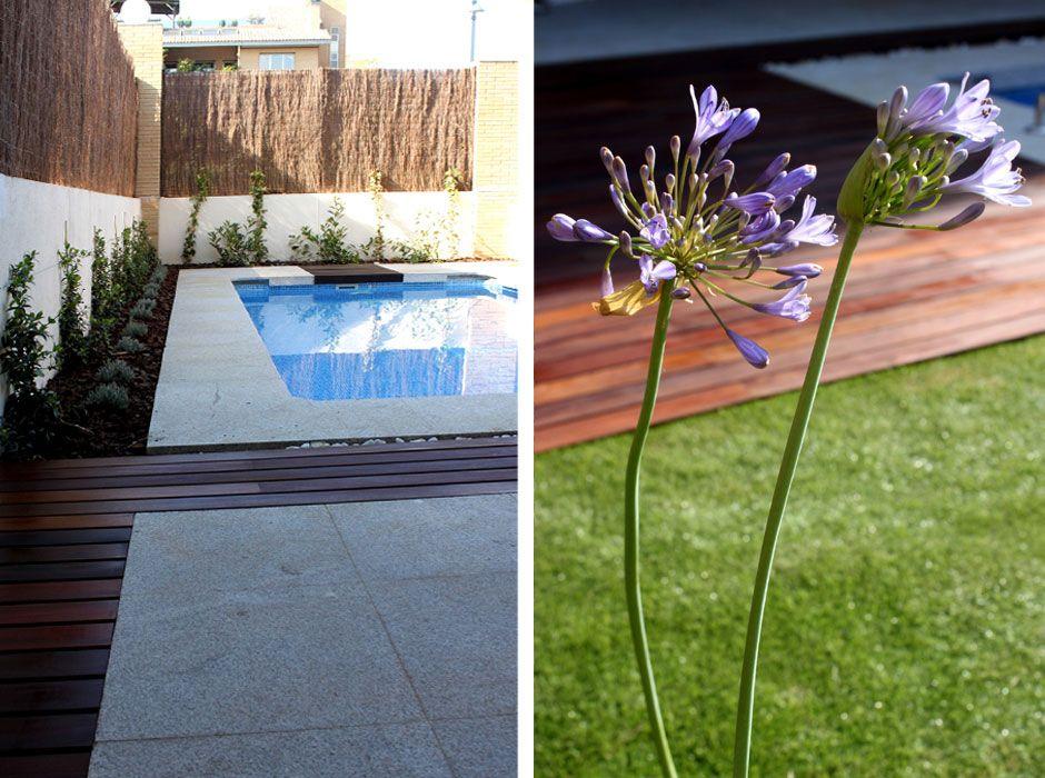 jardin con piscina en pozuelo