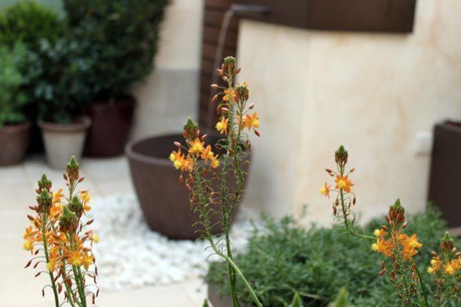 Jardín con encanto en terraza