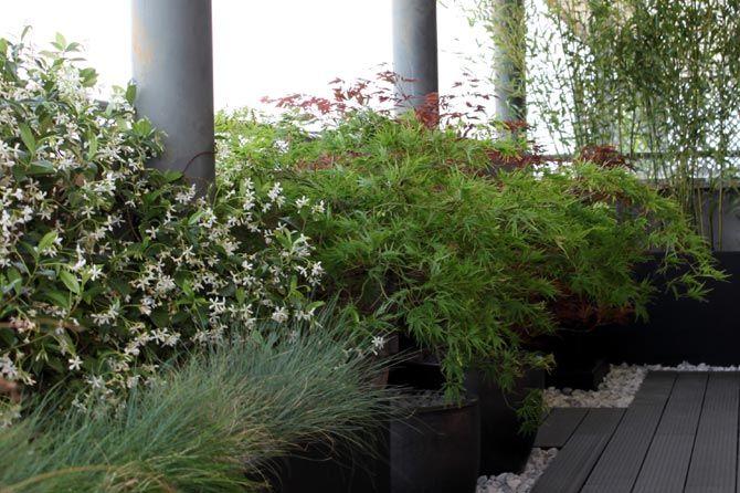 jardn en terraza