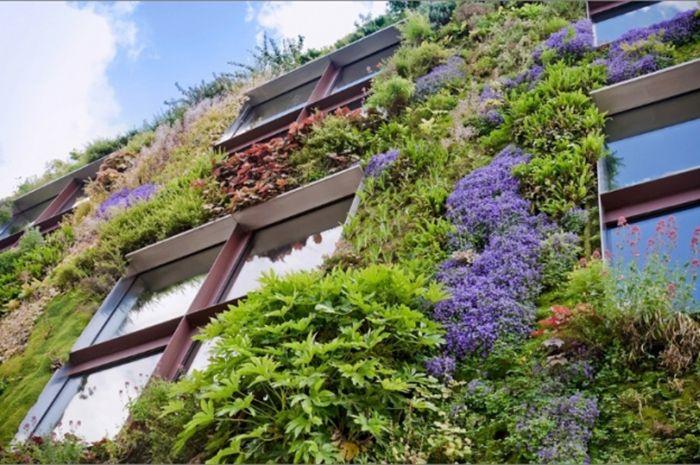 Jardines verticales la habitaci n verde for Jardines verticales precios
