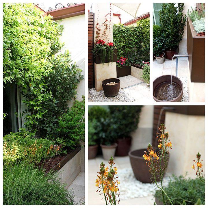 Jardines peque os de dise o la habitaci n verde for Diseno jardines