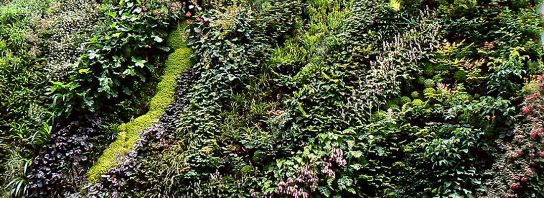 5 jardines verticales para visitar en madrid la for Jardines que visitar en madrid