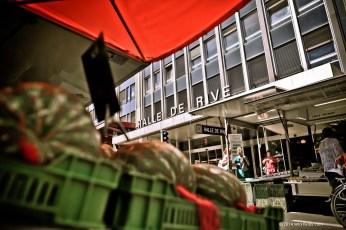 Halle-de-rive-07