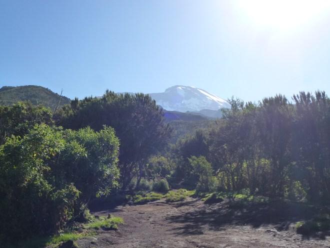 Vue sur le Kili depuis Machame Hut
