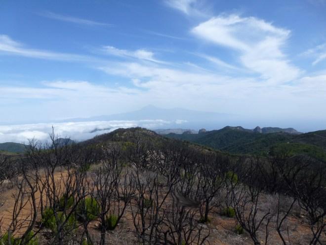 Alto de Garajonay, La Gomera - Canaries