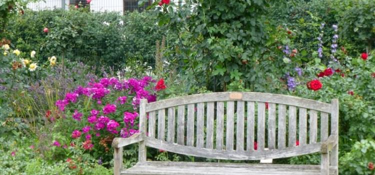 Der Rosengarten in Hadamar