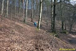 Es geht wieder durch den Wald