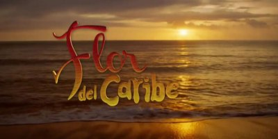 Flor del Caribe. Crítica final de la telenovela