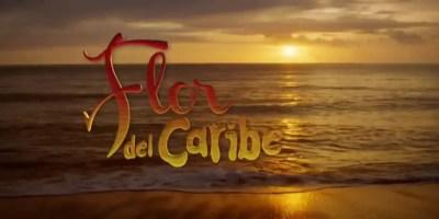 Flor del Caribe. Crítica de la semana de estreno