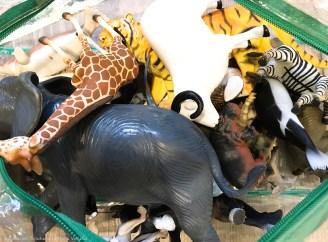 Animales del zoo. Asociación Solidaria La Hora Violeta.jpg