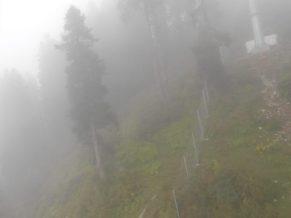Malam Jabba Ski Resort Weather (47)